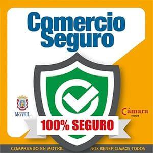 COMERCIO SEGURO - Vitalys Center